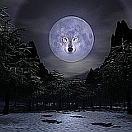 Moon Wolf WP Avatar