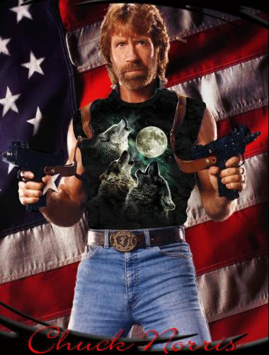 The source of Chuck Norris' awesome power