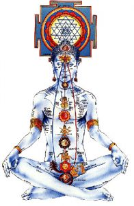 Source of Kundalini  chakras: http://www.3rdstcenter.org/images/chakras.jpg